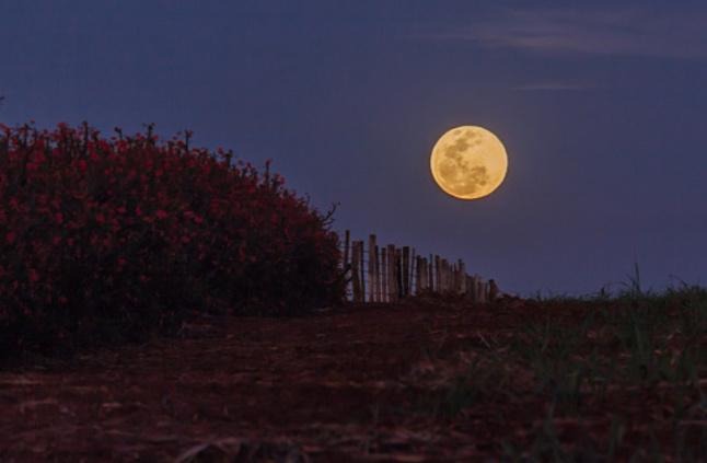 بالصور صور عن القمر , اشكال ظهور القمر 5271 4