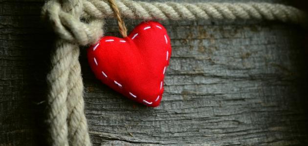 بالصور الفرق بين الحب والعشق , فرق بين الحب والعشق 5757 4