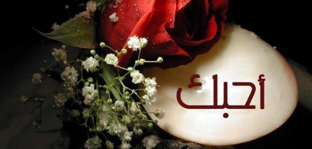 بالصور الفرق بين الحب والعشق , فرق بين الحب والعشق 5757 9