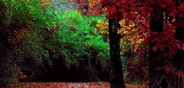 بالصور اجمل المناظر الطبيعية , تعرف على المناظر الطبيعيه حول العالم 5812 4