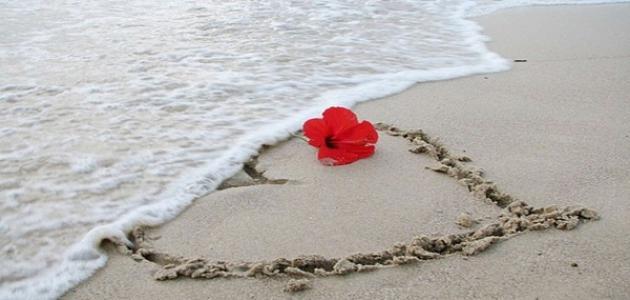 بالصور كلام حب للحبيب , ارق واجمل كلام حب تهديه لحبيبك 5813 6