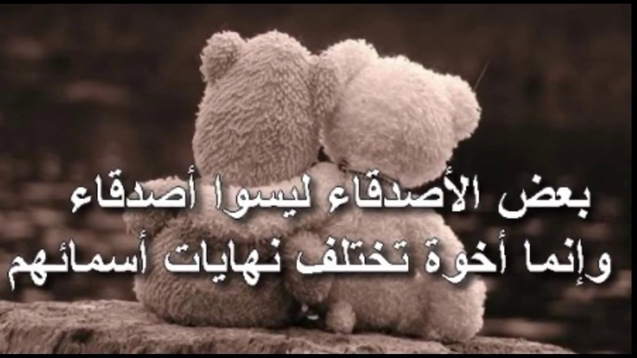 بالصور كلمات معبرة عن الصداقة , اجمل الكلمات عن حب الصداقه 6041 1