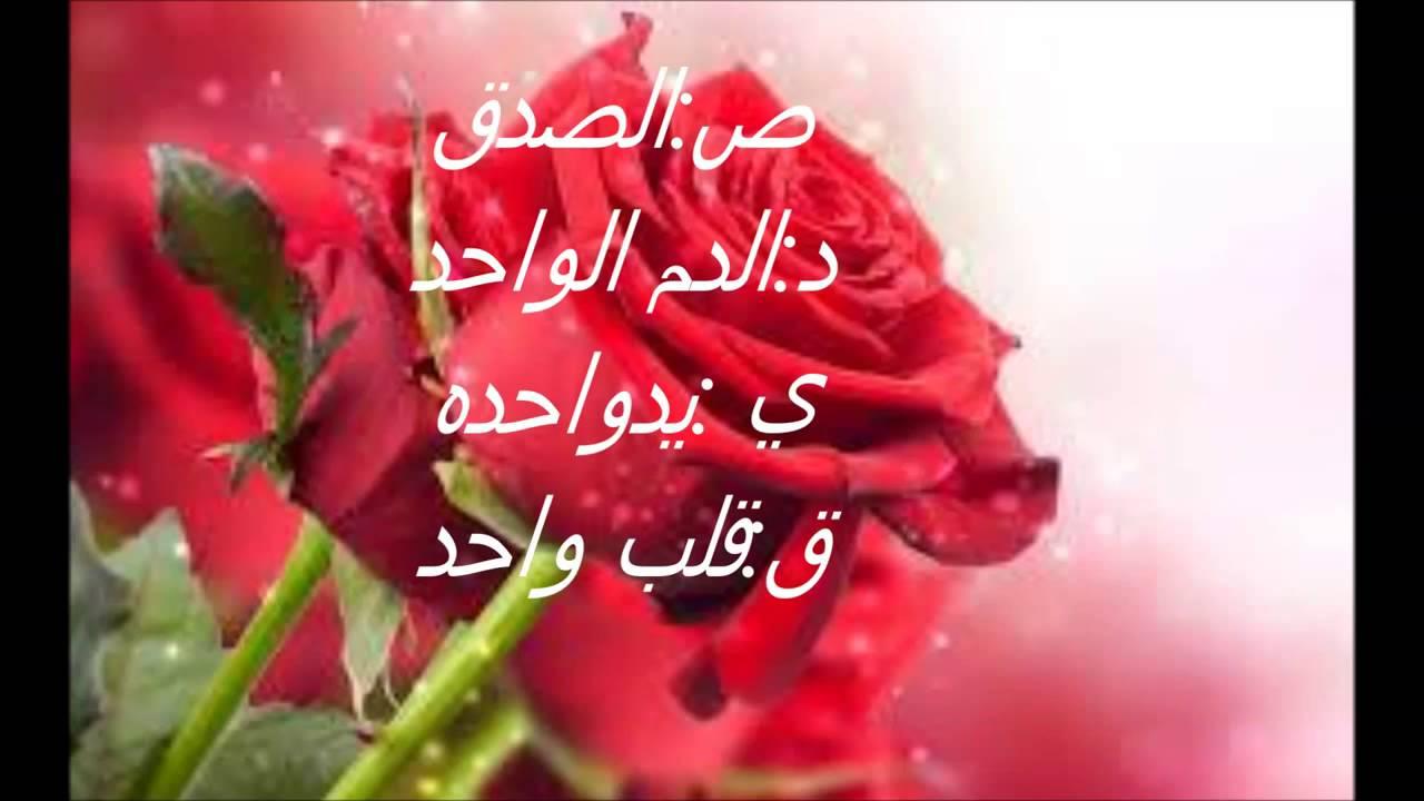 بالصور كلمات معبرة عن الصداقة , اجمل الكلمات عن حب الصداقه 6041