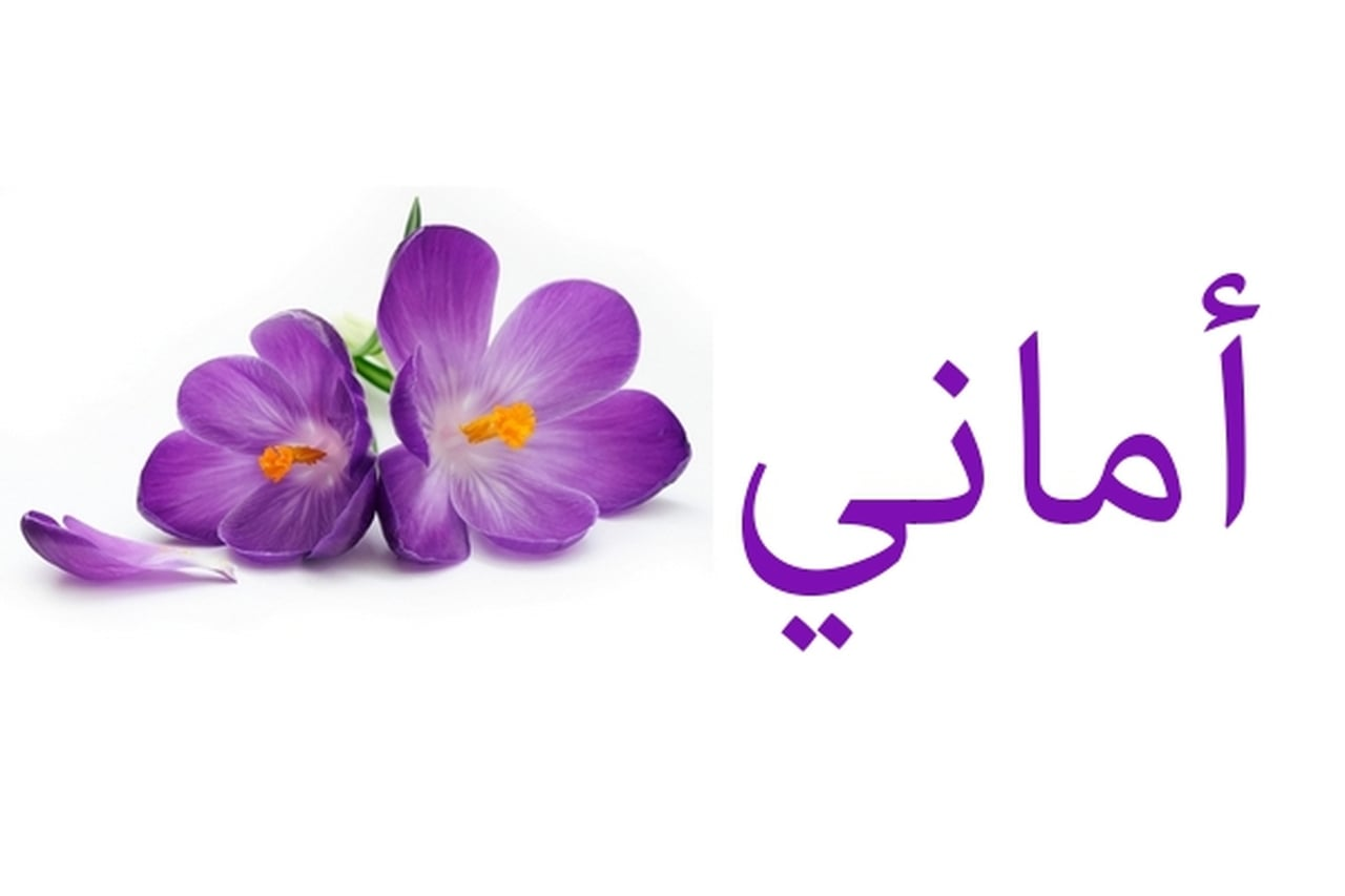 صوره معنى اسم اماني , من اجمل الاسماء امانى تعرفى على معنى اسمك
