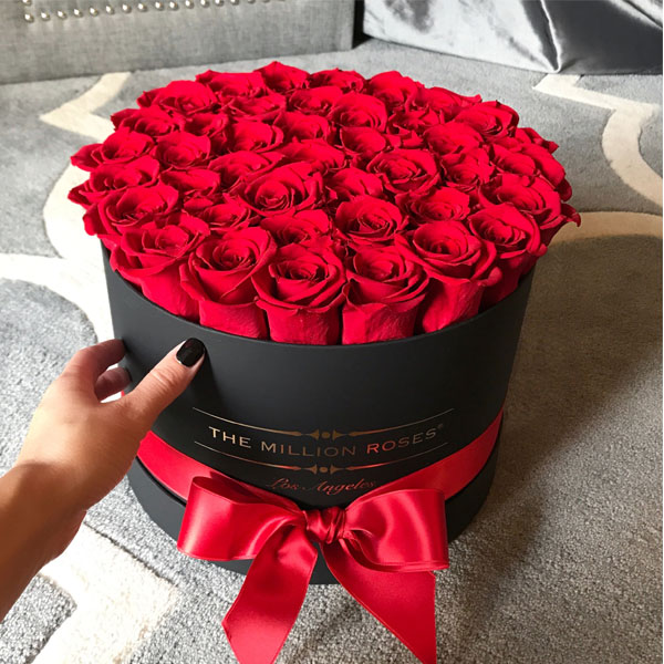 بالصور صور ورود جميله , اجمل اشكال والوان الورود 6250 4