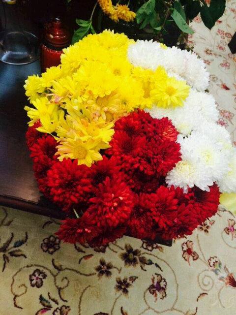 بالصور صور ورود جميله , اجمل اشكال والوان الورود 6250 7