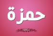بالصور معنى اسم حمزة , حمزة من اجمل الاسماء 3723 1 110x75