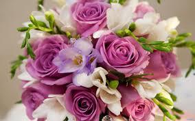 بالصور صور زهور جميلة , افضل الصور للزهور الجميلة 4708 11