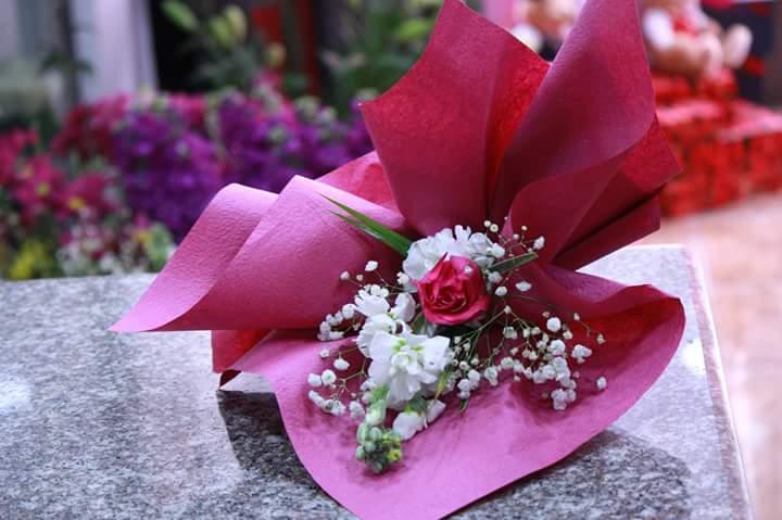 بالصور صور زهور جميلة , افضل الصور للزهور الجميلة 4708 6