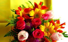 بالصور صور زهور جميلة , افضل الصور للزهور الجميلة 4708 8