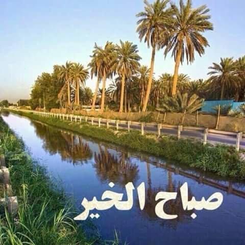 بالصور صباح البركة , افضل الصور لكلمة صباح البركة وصباح الفل 4736 5
