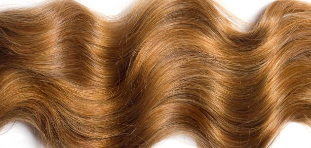 بالصور خلطات تطويل الشعر , خلطة رهيبة لتطويل الشعر 5739 2