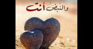 بالصور كلمات في حب الزوج , اجمل الكلام في حب الزوج 5742 10 310x165