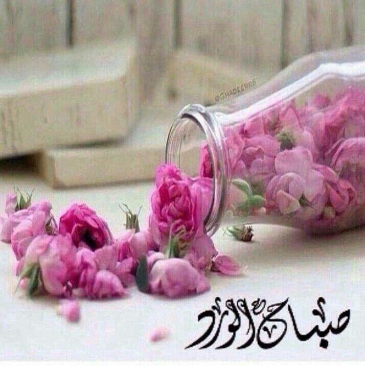 بالصور خلفيات صباحيه , اجمل الخلفيات للصباح 5886 10