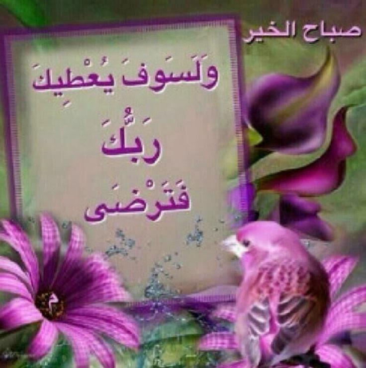 بالصور خلفيات صباحيه , اجمل الخلفيات للصباح 5886 8