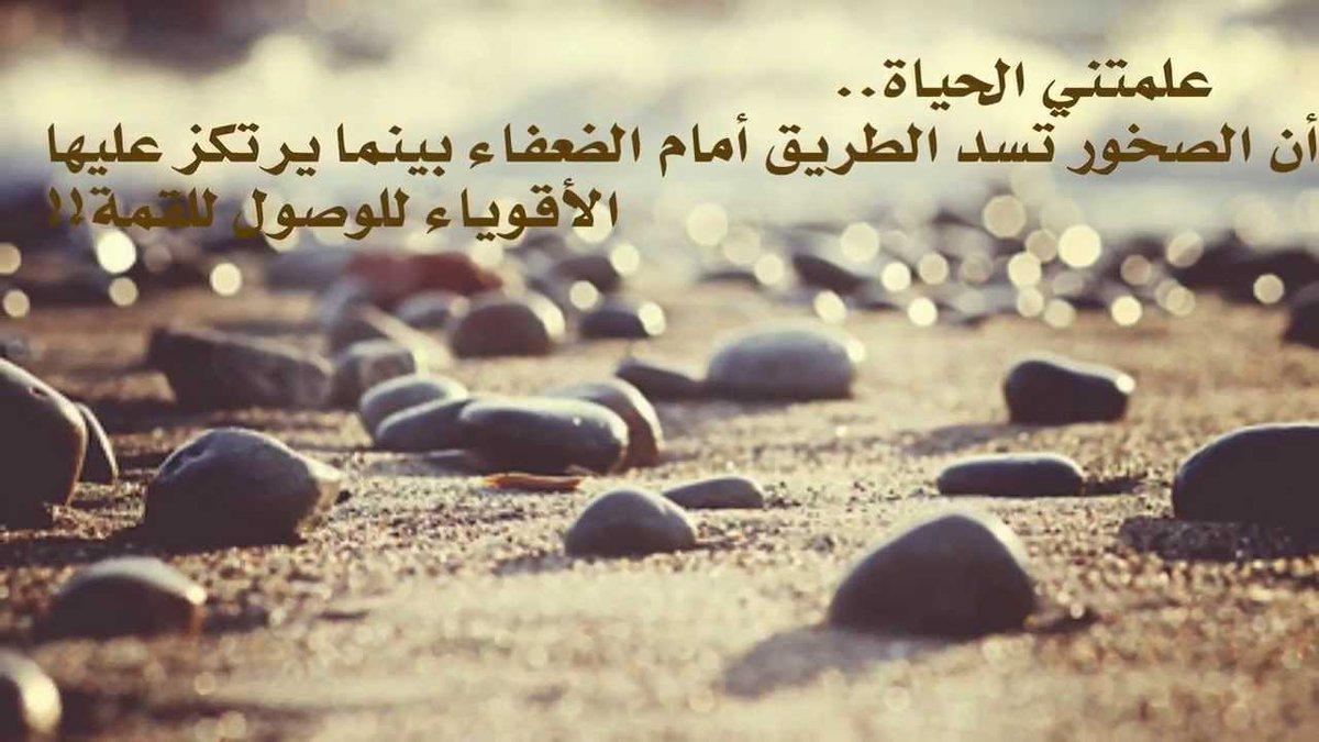 بالصور صور عن حبيبي , اجمل الصور للحبيب 5900 11