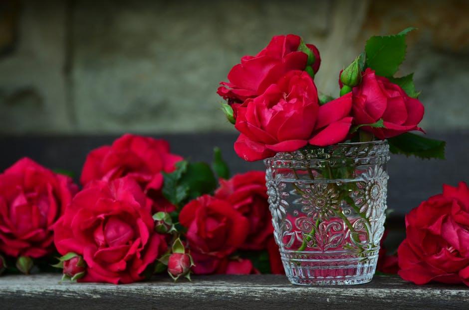 بالصور اجمل بوكيه ورد فى الدنيا , جمال الورد واشكاله والوانه 5947 6