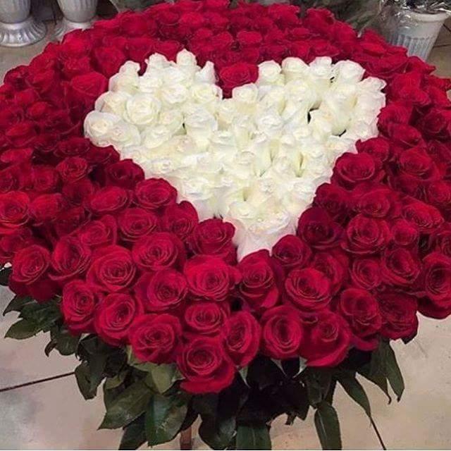 بالصور اجمل بوكيه ورد فى الدنيا , جمال الورد واشكاله والوانه 5947 7