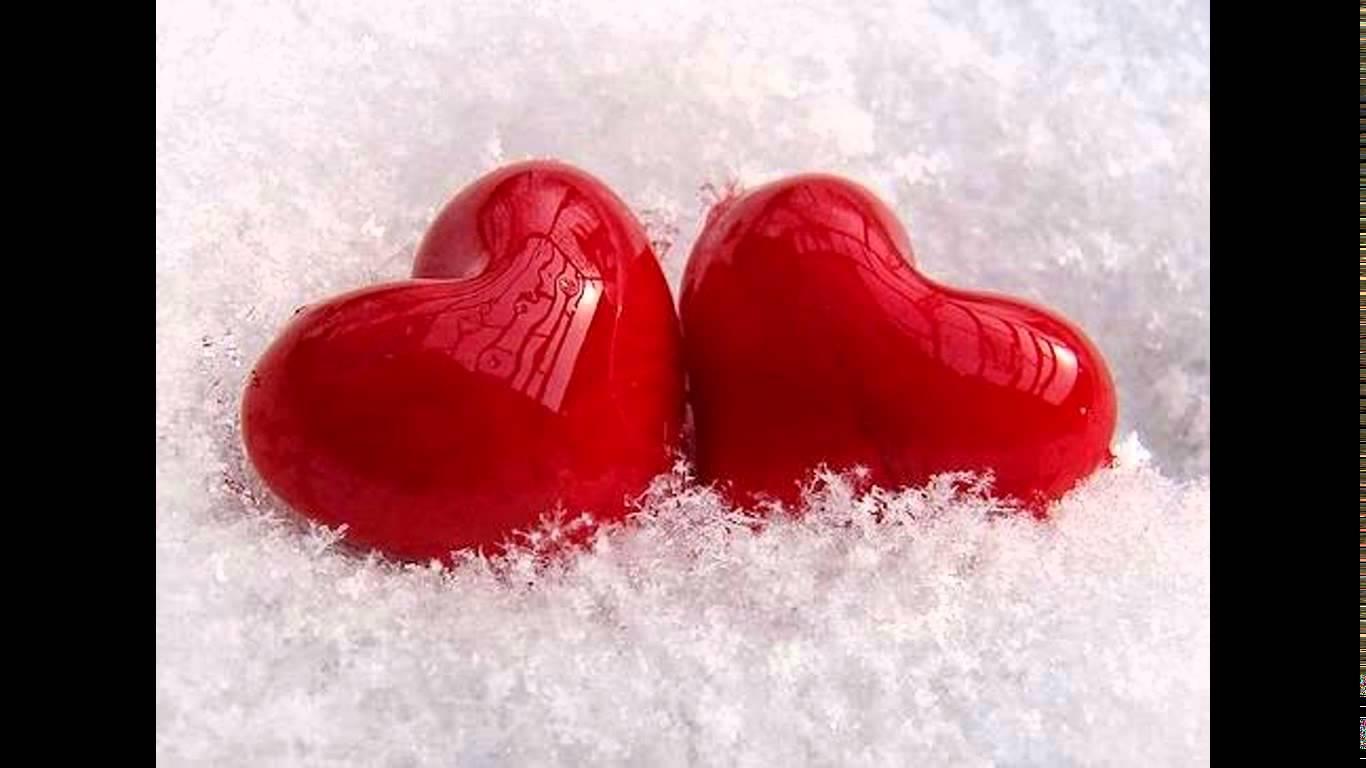 بالصور صورعن الحب , جمال الحب واجمل الصور التى تعبر عنه 5948 2