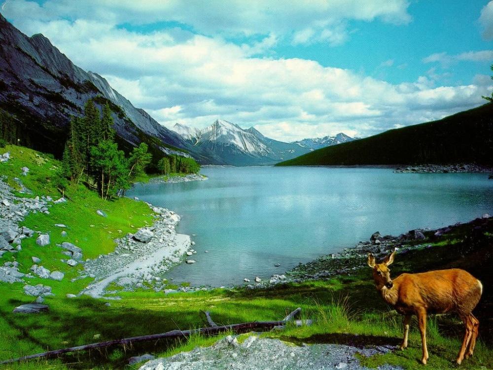 بالصور صور مناظر جميلة , اجمل الطبيعيه حول العالم 6005 4