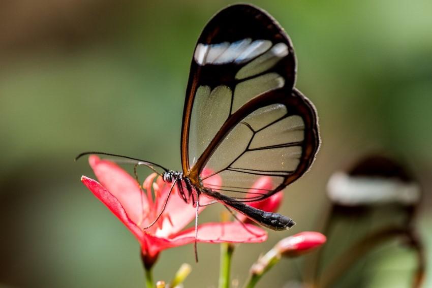 بالصور صور مناظر جميلة , اجمل الطبيعيه حول العالم 6005 9