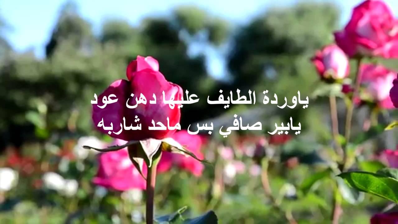 بالصور شعر عن الورد , اجمل كلام يقال عن الورد 6109 1