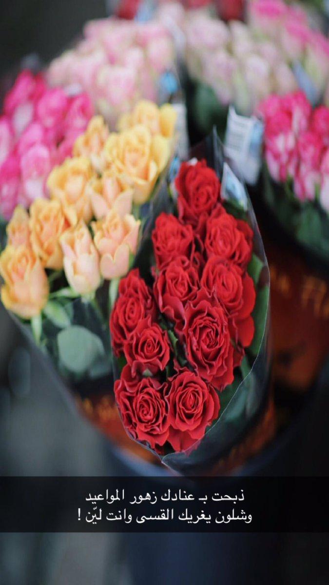 بالصور شعر عن الورد , اجمل كلام يقال عن الورد 6109 11