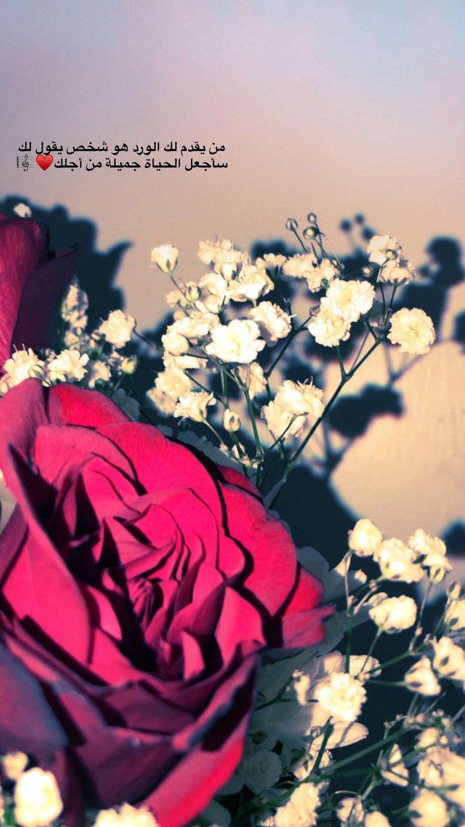 بالصور شعر عن الورد , اجمل كلام يقال عن الورد 6109 3