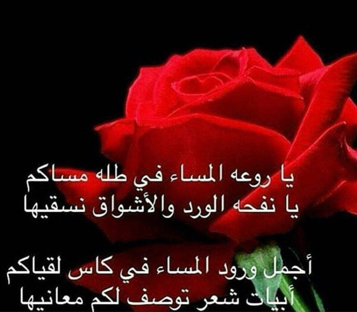 بالصور شعر عن الورد , اجمل كلام يقال عن الورد 6109 4