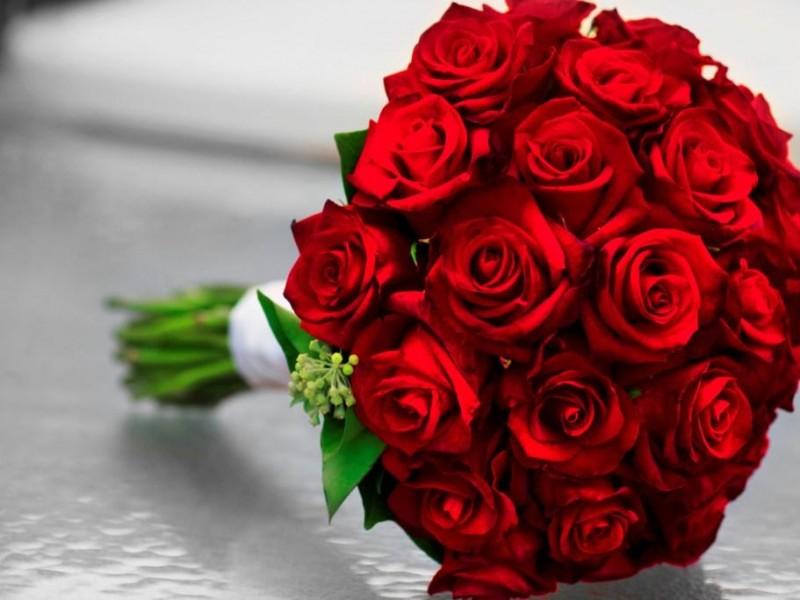 بالصور شعر عن الورد , اجمل كلام يقال عن الورد 6109 8