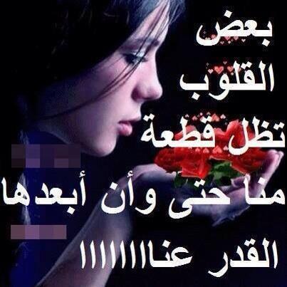 صورة كلام عتاب للحبيب , خواطر عتاب للحبيب 1008 2
