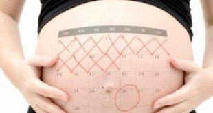 صور حاسبة الحمل والولادة , كيفية حساب فترة الحمل