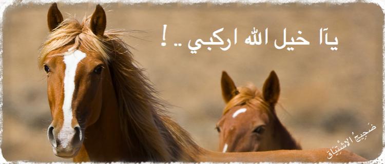 نفسي حقيقة التشوه شعر عن الخيول العربية Sjvbca Org