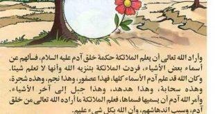 قصص اسلاميه , روايات من الاسلام