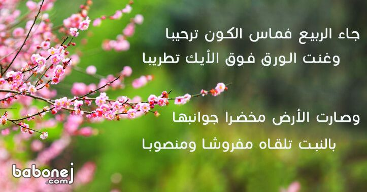 شعر عن الربيع كلمات شعر عن فصل الربيع عبارات