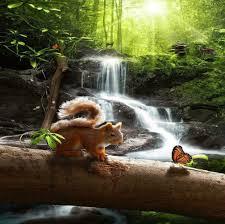 بالصور خلفيات طبيعة , صور الطبيعة الخلابه 2307 3