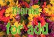بالصور شكرا على قبول الصداقة , احتفي باصدقائك الجدد باجمل الصور 2751 9 110x75