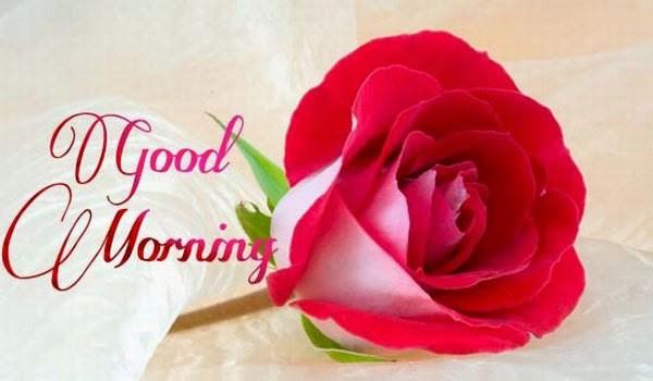 صورة رسالة صباحية للحبيب , للمخطوبين والمتزوجين اجمل رسالة صباح الخير