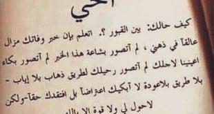 صوره كلام عن الاخ الحنون , عبارات عن حنان الاخ