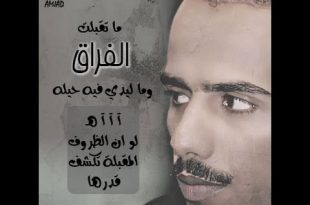 بالصور قصائد حامد زيد , اجمل وافضل الشعراء 3791 9 310x205