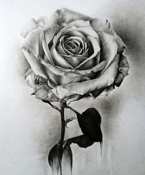 صور رسومات جميله , هواية وابداع فى الرسم