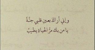 كلمات حب قصيره جدا , اجمل ما فى الحب