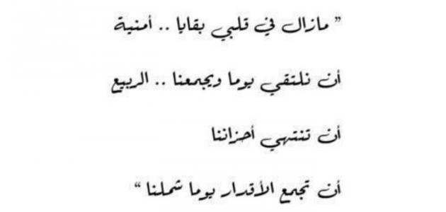 نتيجة بحث الصور عن قصائد في حب مصر