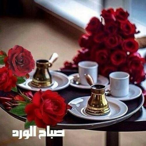 بالصور عبارات صباح الخير , احلي و اروع و اجمل العبارات صباح الخير 4979 8