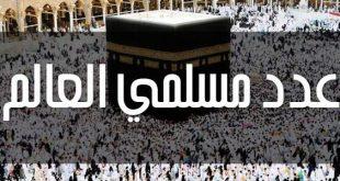بالصور كم عدد المسلمين في العالم , تعرفوا علي عدد المسلمين في دول العالم كله 5125 3 310x165