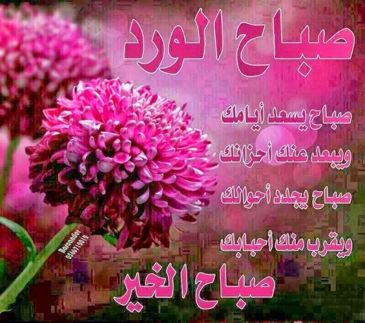 صورة صباح الخير يا حبيبي , كلمات وعبارات صباحية جميلة 5514 4