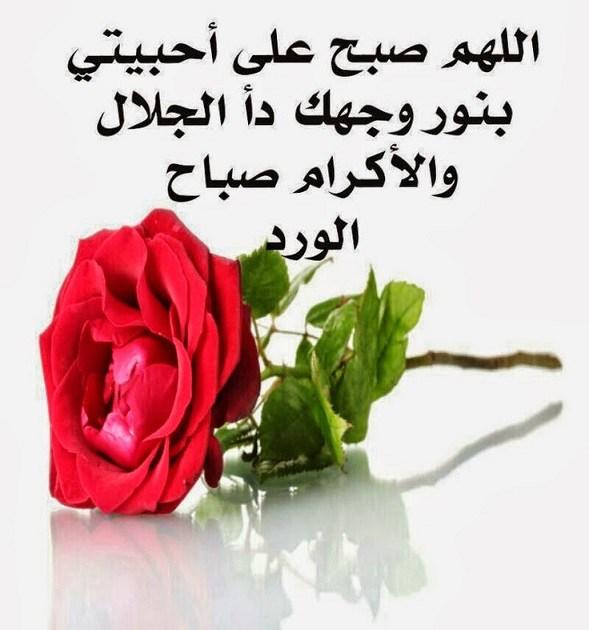 صورة صباح الخير يا حبيبي , كلمات وعبارات صباحية جميلة 5514 8