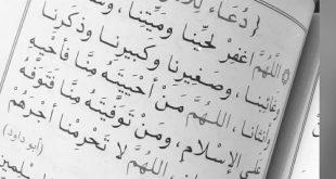 صورة دعاء الام , مكانه الام وفضل دعائها