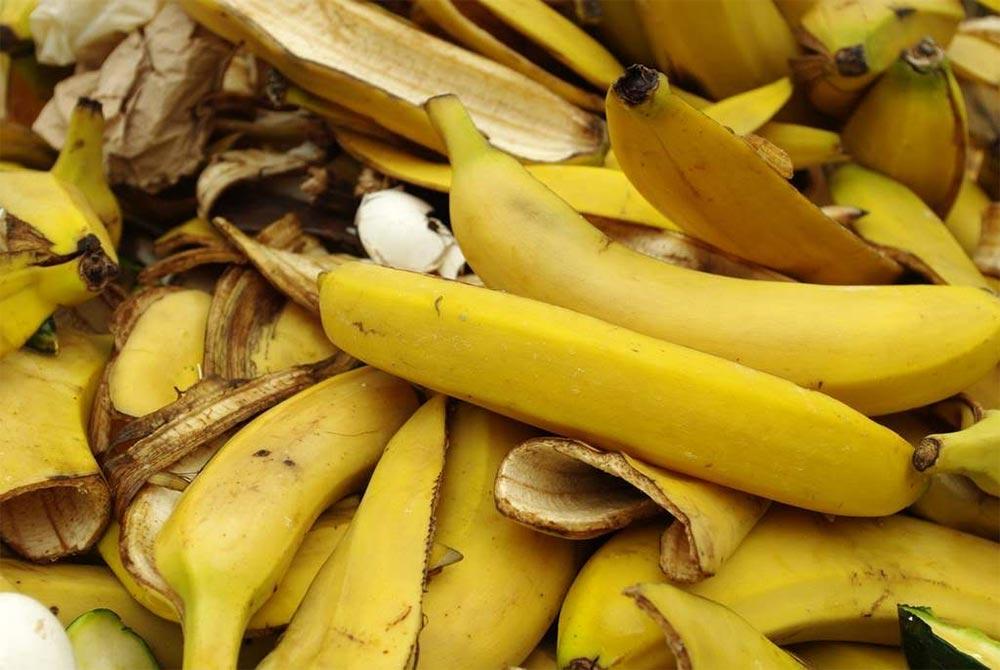 بالصور ماهي فوائد الموز , الفوائد المختلفة للموز 5620 1
