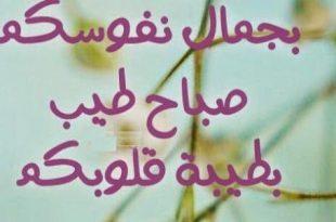 صورة كلام صباح الخير للجميع , كلام جميل صباح الخير